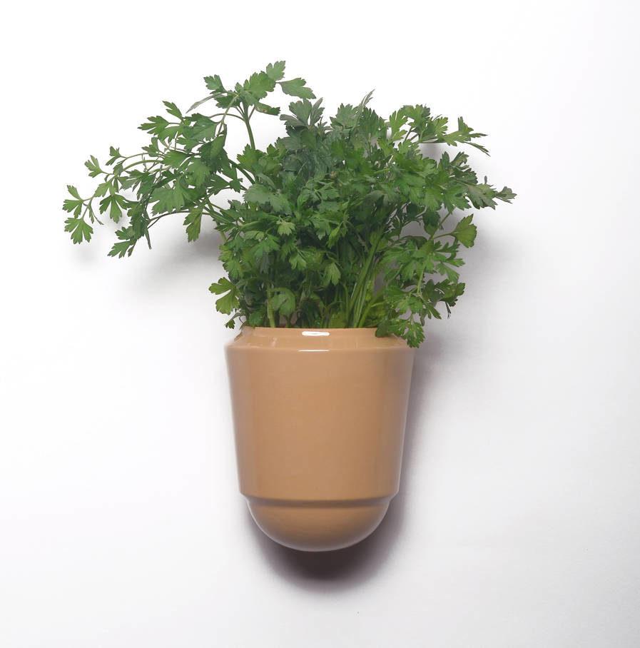 Wandpot Herba voor verse kruiden, oker, Suspense Wandcollectie