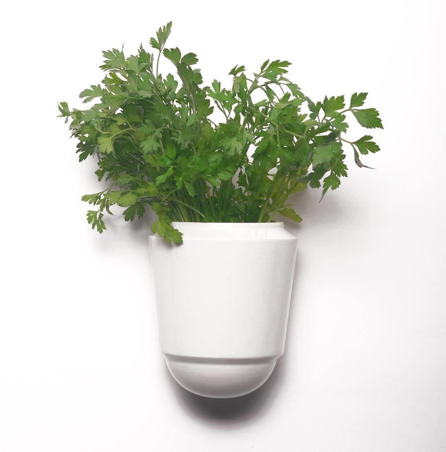 Wandpot Herba voor verse kruiden, wit